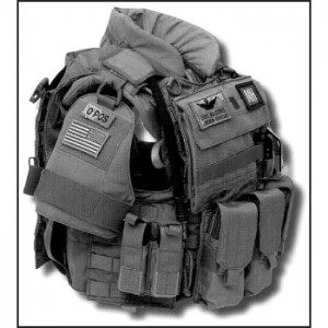 Eagle Industries' Combat Integrated Armor Carrier System