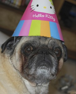 Celebrate your birthday in style with birthday freebies. Image from Flikr.com.