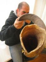 Now that's a shofar! Image from wikimedia.